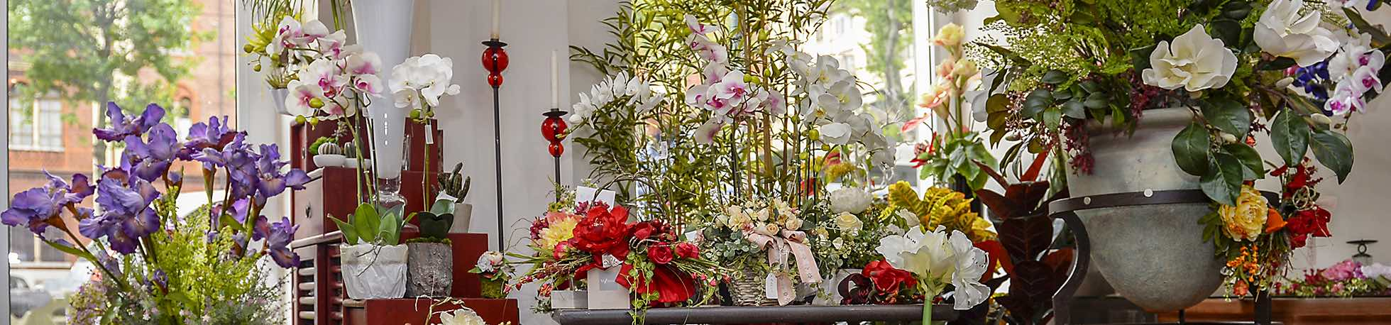 il faggio negozio fiori artificiali corso Vittorio